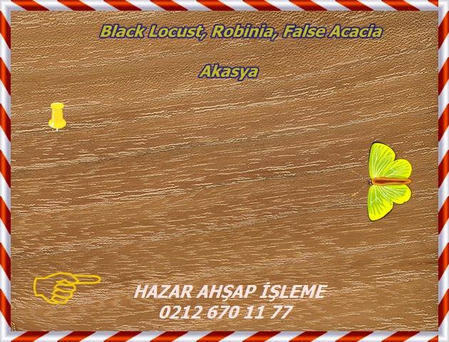 black-locust