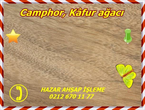 camphor-sealed-gw