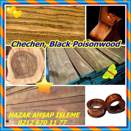 cats Black Poisonwood88