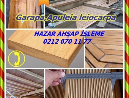 Garapa,Apuleia leiocarpa