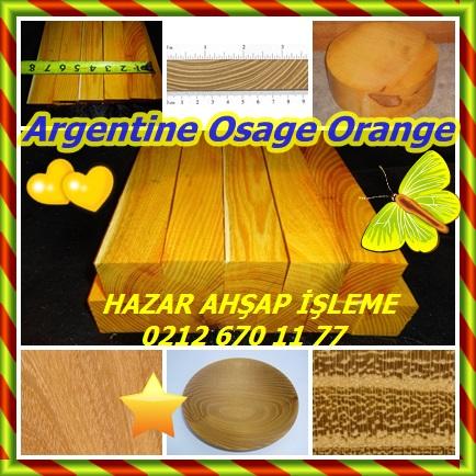 catsArgentine Osage Orange