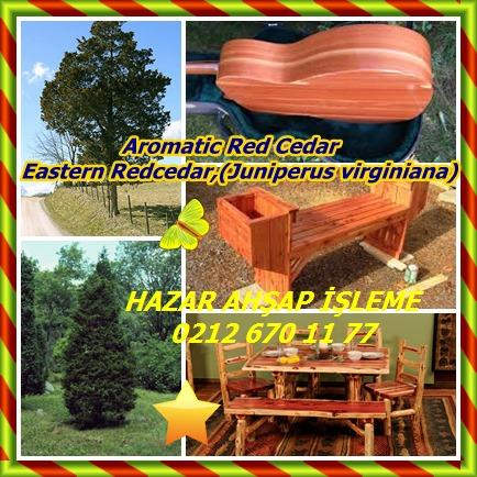 catsAromatic Red Cedar, Eastern Redcedar,(Juniperus virginiana)6