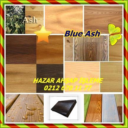 catsBlue Ash255