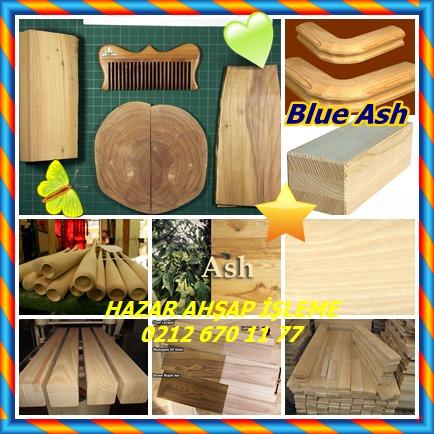 catsBlue Ash452