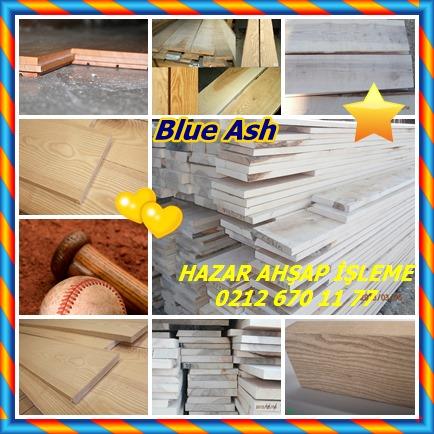 catsBlue Ash785
