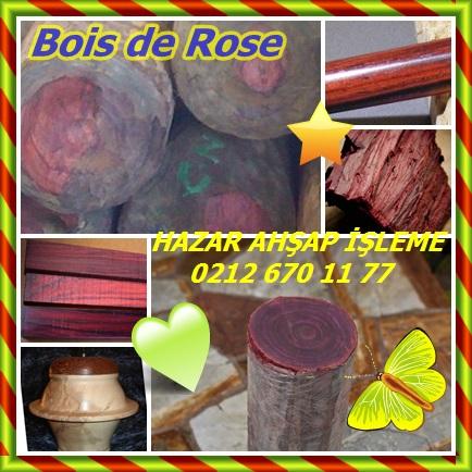 catsBois de Rose7