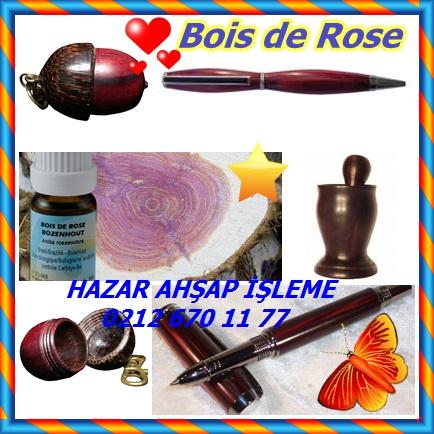 catsBois de Rose9