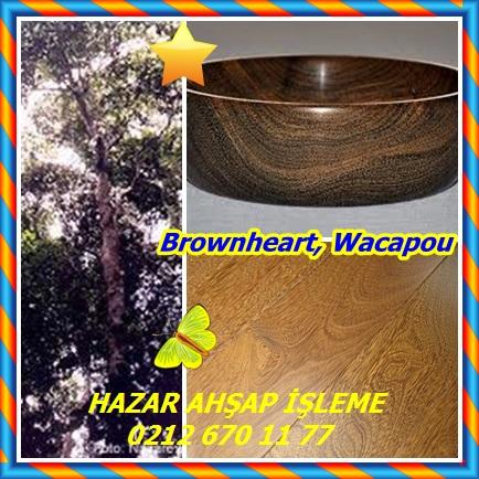 catsBrownheart, Wacapou343