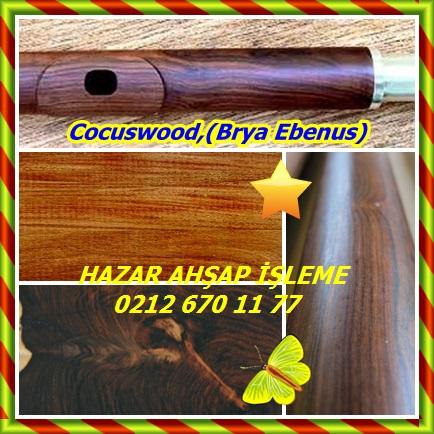 catsCocuswood,(Brya Ebenus)22