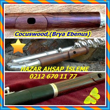 catsCocuswood,(Brya Ebenus)767