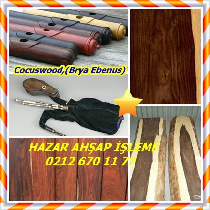 catsCocuswood,(Brya Ebenus)989