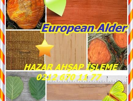 Avrupa Alder, Kızılağaç,(Alnus glutinosa),Etiket kızılağaç, Kızılağaç, Siyah kızılağaç, Pürüzsüz kızılağaç, Ortak kızılağaç .