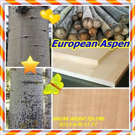 catsEuropean Aspen22