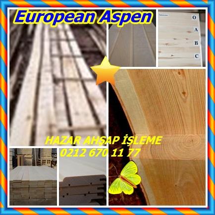 catsEuropean Aspen434