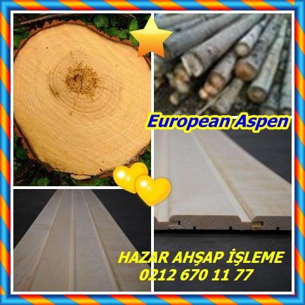 catsEuropean Aspen6655
