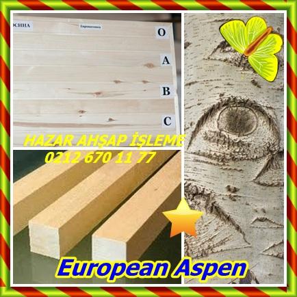catsEuropean Aspen766