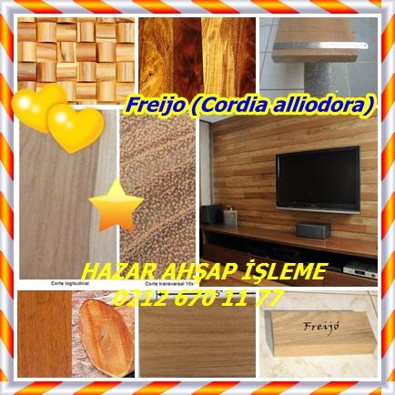 catsFreijo (Cordia alliodora)44