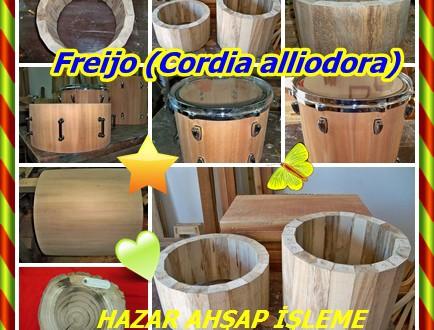Freijo, Laurel Blanco, Cordia spp. (C alliodora, C goeldiana),Defne,Kahve Ceviz,
