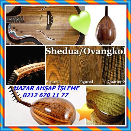 catsGitar üretiminde klasik gitarın arka yüzeyinde tercih edilen bir ağaçtır.