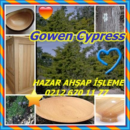 catsGowen Cypressdeds