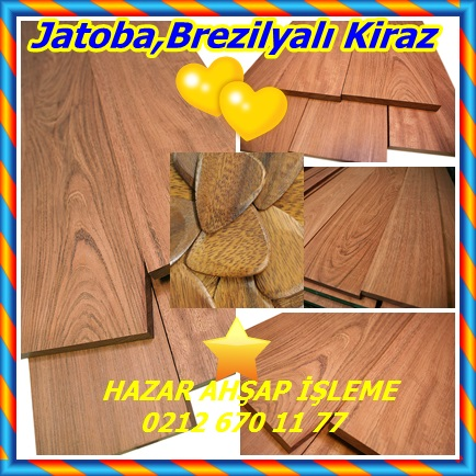 catsJatoba,Brezilyalı Kiraz64464
