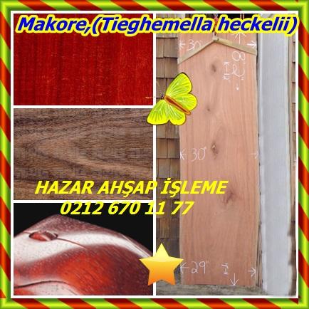 catsMakore,(Tieghemella heckelii)4567
