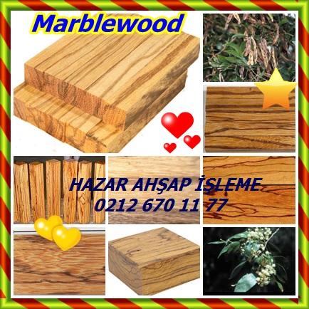 catsMarblewood221