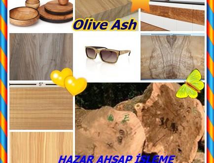 Olive Ash,Zeytin Kül,Kirli Dişbudak, Oil Ash,Sahte Beli ve Zebrano, (Fraxinus excelsior), Olivesche,Oliv Esche