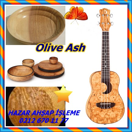 catsOlive Ash63
