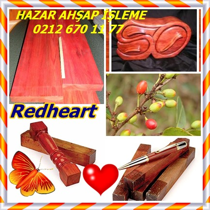 catsRedheart22
