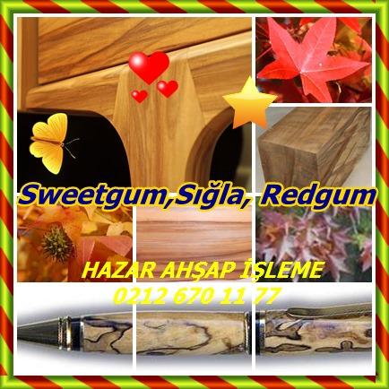 catsSweetgum,Sığla, Redgum78541