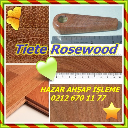 catsTiete Rosewood