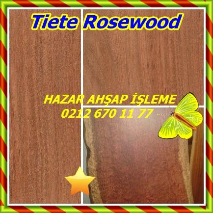 catsTiete Rosewood44