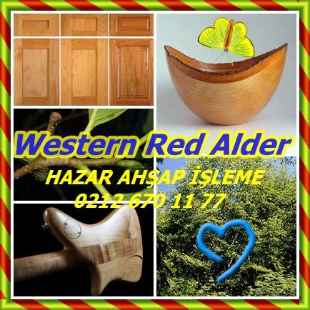 catsWestern Red AlderSD