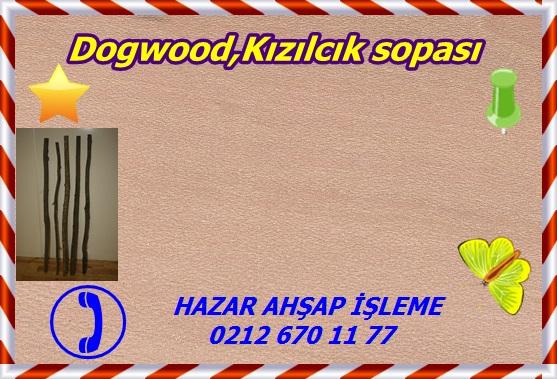 dogwood-gw