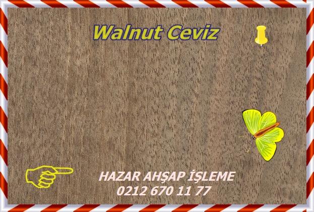 english-walnut