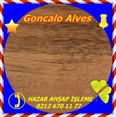goncalo-alves1