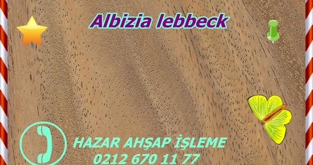 lebbeck