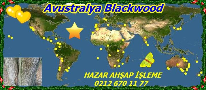 map_of_Acacia_melanoxylon