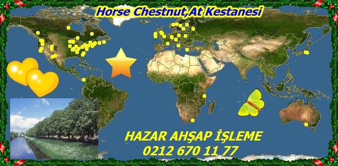 map_of_Aesculus_hippocastanum22