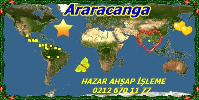 map_of_Aspidosperma_megalocarpon