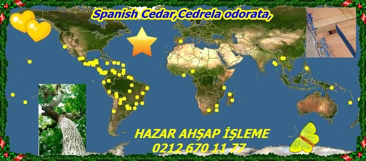 map_of_Cedrela_odorata1