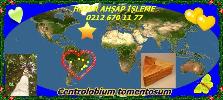 map_of_Centrolobium_tomentosum44