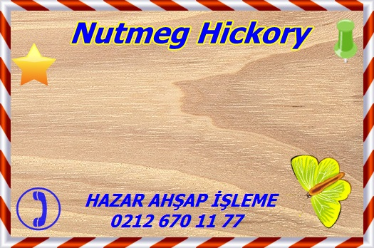 nutmeg-hickory