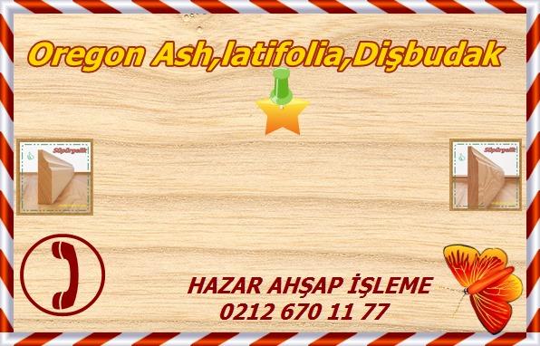 oregon-ash