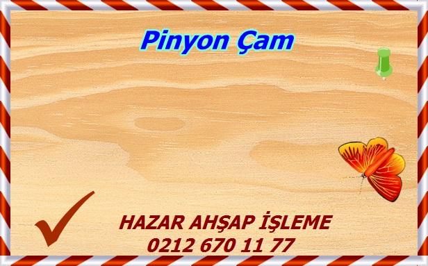 pinyon-pine