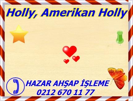 Ilex opaca, American Holly, Harold Nogle Estate