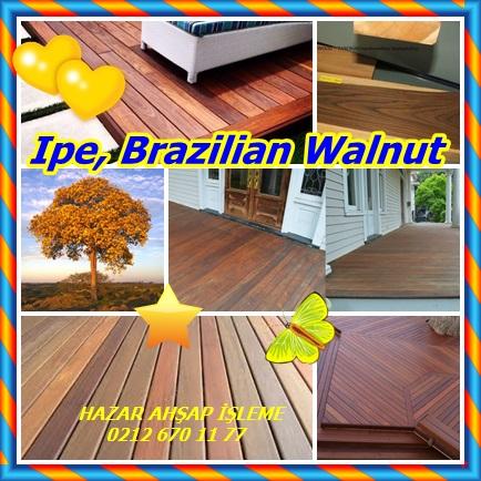 catsIpe, Brazilian Walnut