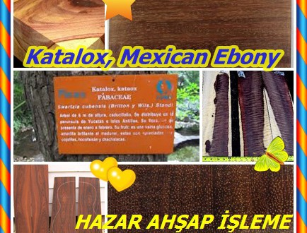 Katalox, Mexican Ebony,Swartzia spp., (S cubensis),Catalox, Katalox, Wamara