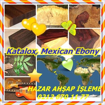 catsKatalox, Mexican Ebonyff